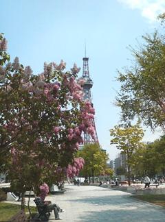 2008.05.17_リラ01.jpg