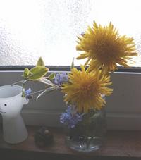 2009.05.18_tanpoop.jpg