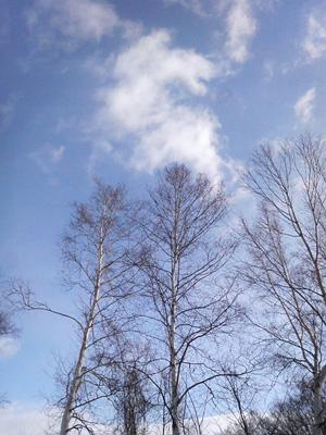 2010.03.19_01.jpg